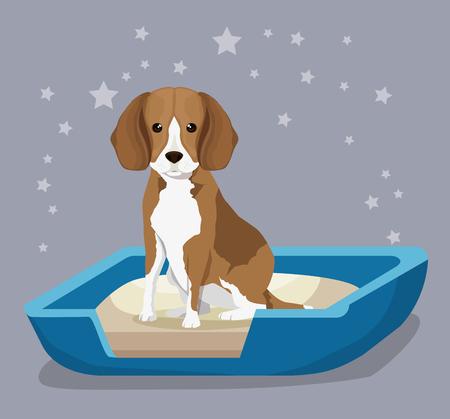 dog in sand box pet friendly vector illustration design Ilustração