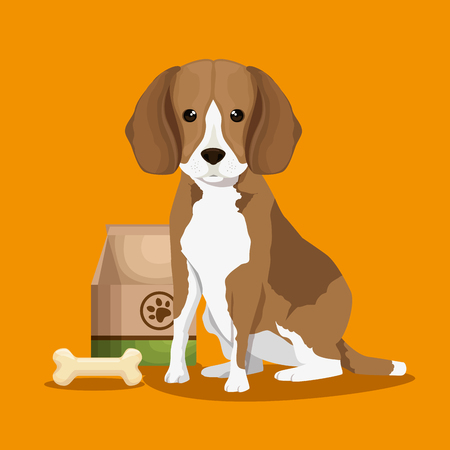dog with bone and food bag pet friendly vector illustration design