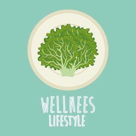 lettuce vegetable wellness lifestyle vector illustration design