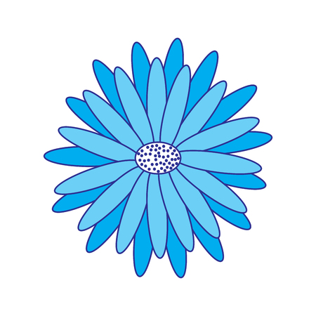 beautiful natural flower daisy petals decoration vector illustration blue image