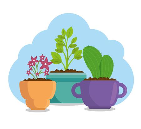 cute houseplant in pot vector illustration design