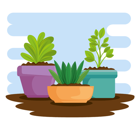 cute houseplant in pot vector illustration design