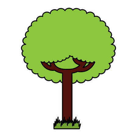 Green tree vector illustration