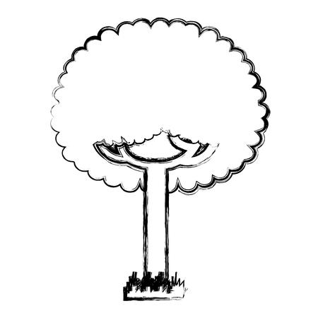 green tree leafy branches natural on grass vector illustration Reklamní fotografie - 96055555