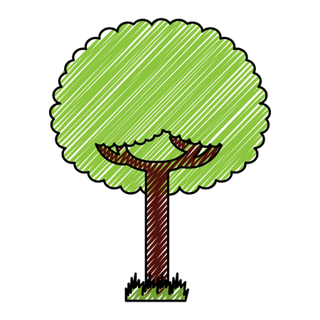 Green tree leafy branches natural on grass vector illustration drawing graphic Archivio Fotografico - 96066307