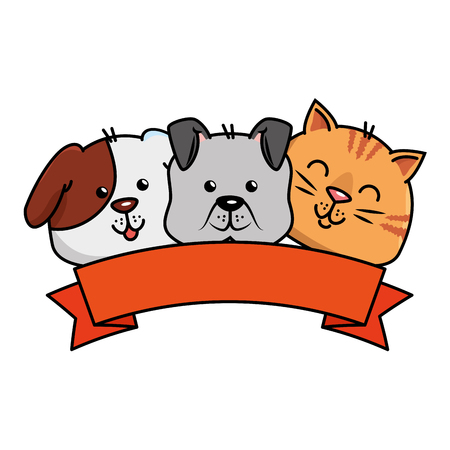cute dog and cat with ribbon vector illustration design
