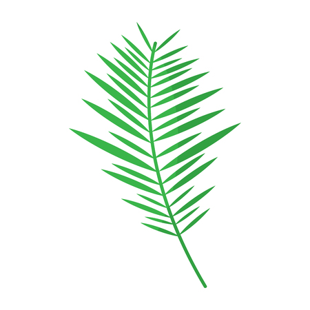 green branch palm leaves frond natural vector illustration Stok Fotoğraf - 96046441
