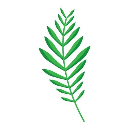 green branch palm leaves frond natural vector illustration Banco de Imagens - 96047435