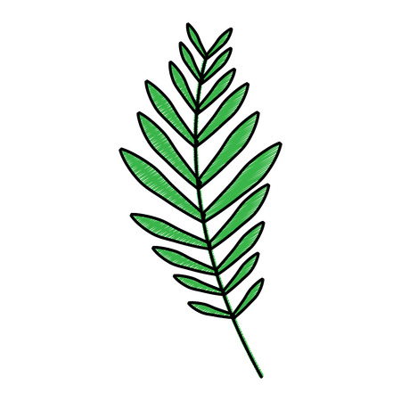 plant leaf icon image vector illustration design