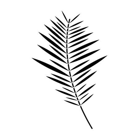 plant leaf icon image vector illustration design  black and white