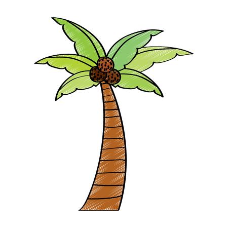ヤシの木ビーチココナッツ植物ベクトル図 写真素材 - 96070220