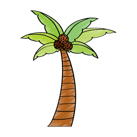 palm tree beach coconut plant vector illustration Иллюстрация