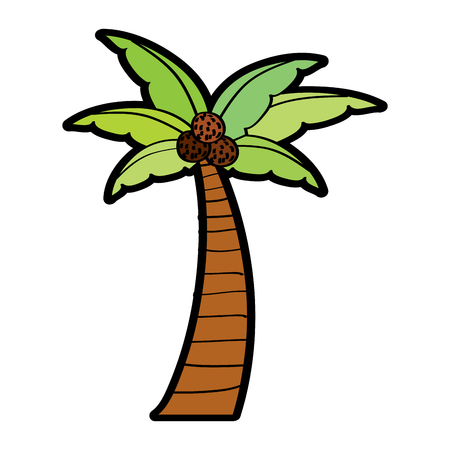Palm coconut plant tree beach flora vector illustration 向量圖像