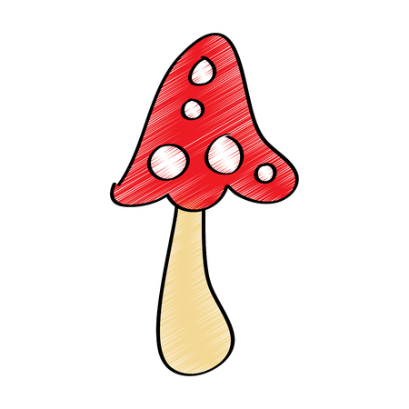 mushroom vegetation plant nature icon vector illustration drawing design color