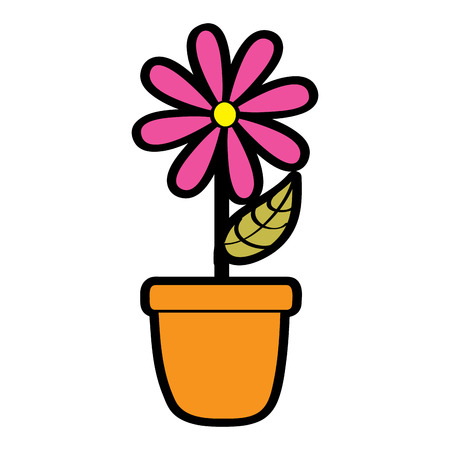 Potted daisy flower vector illustration