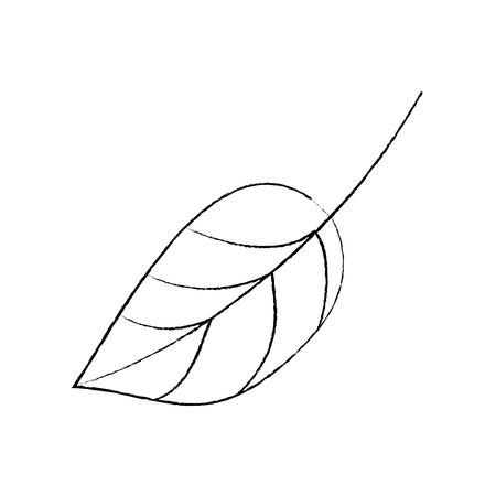 葉の植物植物は自然なアイコンベクトルのイラストスケッチデザイン。  イラスト・ベクター素材