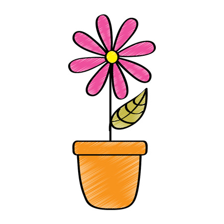 Potted daisy flower petal leaves decoration vector illustration drawing design color. 向量圖像