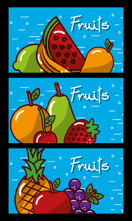 Banners fresh natural tasty fruits on blue background vector illustration