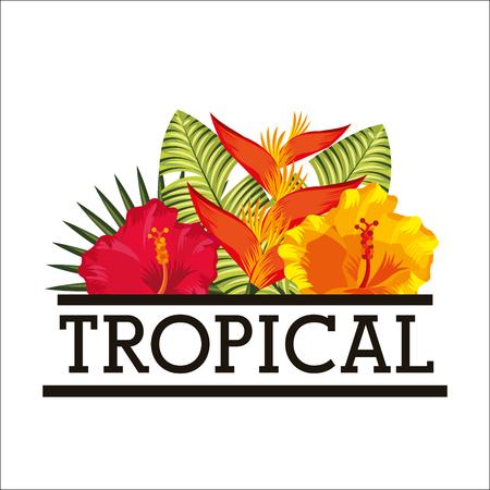 hibiscus bird of paradise tropical flower leaves white background vector illustration Иллюстрация