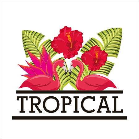 pair flamingo hibiscus flowers tropical palm white background vector illustration 写真素材 - 96196886