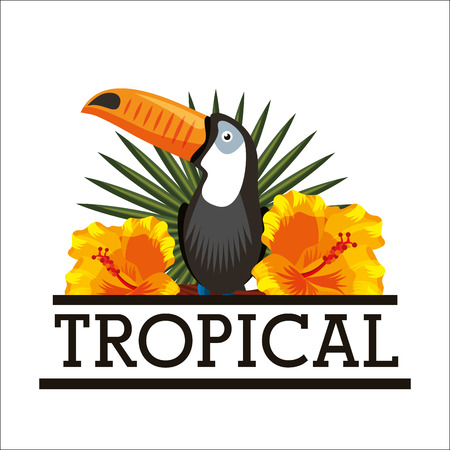 Toucan and hibiscus natural tropical flower leaves white background vector illustration