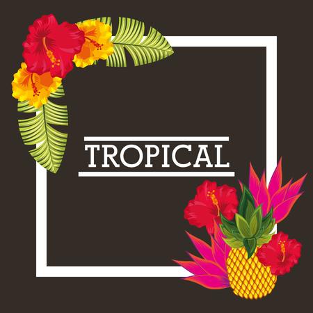 tropical flower pineapple leaves card vector illustration