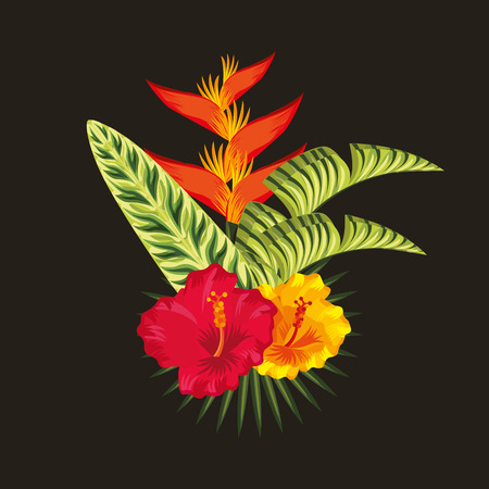 Tropical bird of paradise hibiscus and palm leaves black background vector illustration Illustration