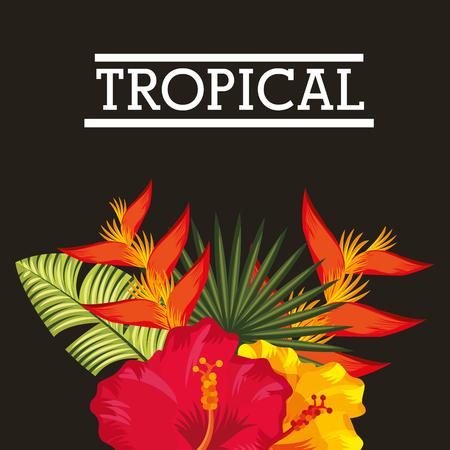 Oiseau fleur tropicale de paradis et hibiscus décoration plante illustration vectorielle Banque d'images - 96293114