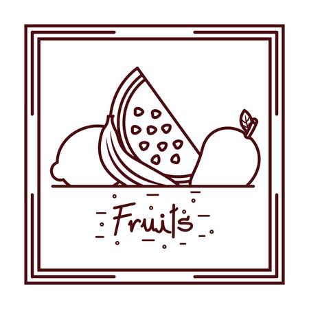 Watermelon banana and lemon fruits doodle design vector illustration