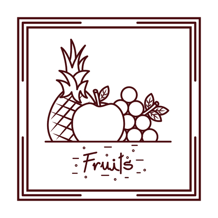 pineapplee grapes apple harvest fruits doodle design vector illustration Stock Photo