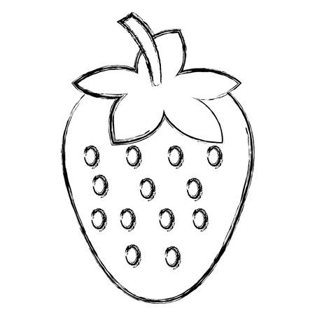 delicious and fresh strawberry vector illustration design