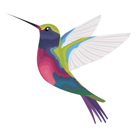 cute hummingbird flying icon vector illustration design