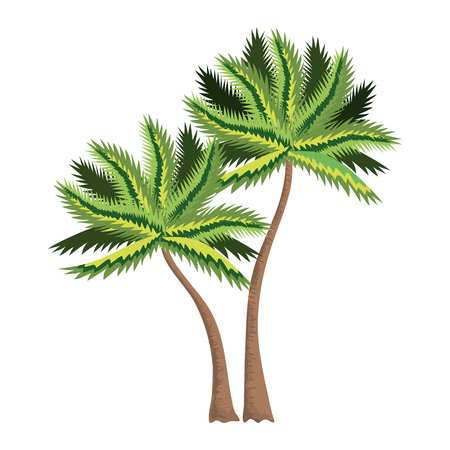 tropical tree palm icon vector illustration design Ilustrace
