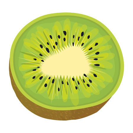 tropical and exotic kiwi fruit vector illustration design  イラスト・ベクター素材