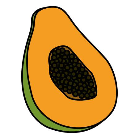 tropical and exotic papaya fruit vector illustration design Ilustração