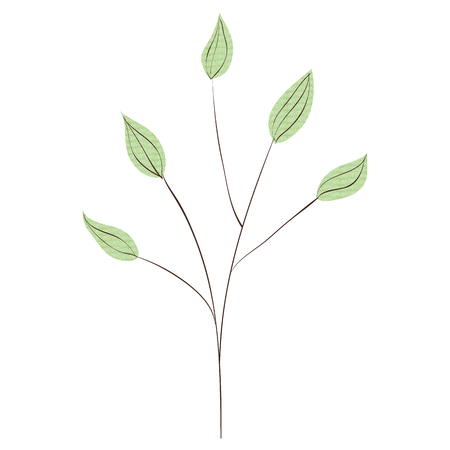 Branch with leafs plant ecology icon vector illustration design