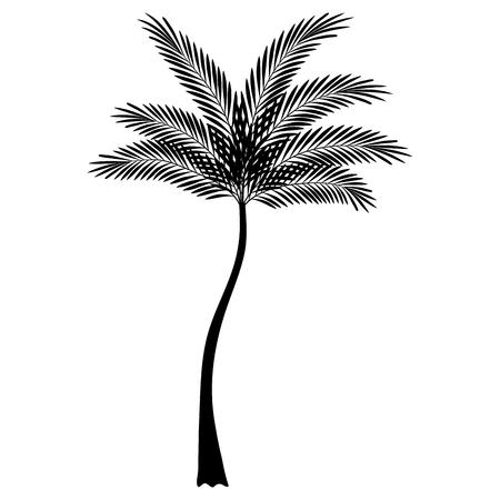 A tropical tree palm icon vector illustration design Ilustrace