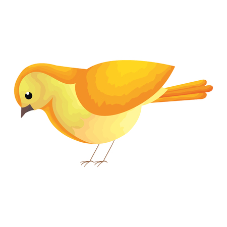 A beautiful bird decorative icon vector illustration design Çizim