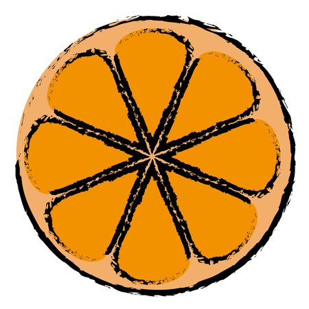 half orange citrus fruit icon vector illustration design