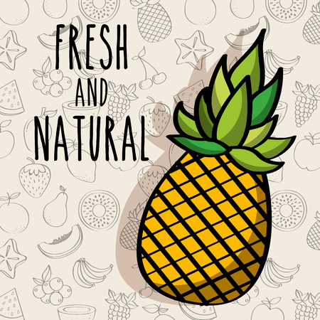 fresh and natural pineapple vector illustration Illustration