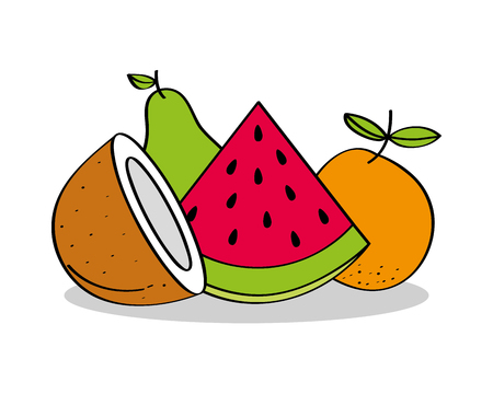 fruits coconut watermelon orange pear healthy food vector illustration