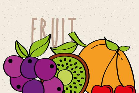 grapes kiwi cherry fruit fresh banner vector illustration Illustration