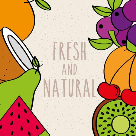 fresh and natural fruits border decoration vector illustration