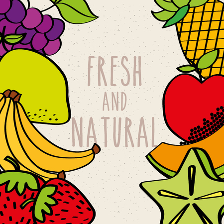 fresh and natural fruits border decoration vector illustration