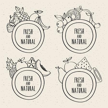 doodle set of fresh fruits and natural labels vector illustration