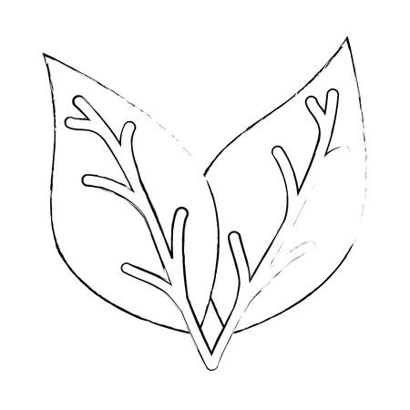 植物の葉のアイコン