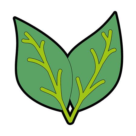 Plant leaves icon