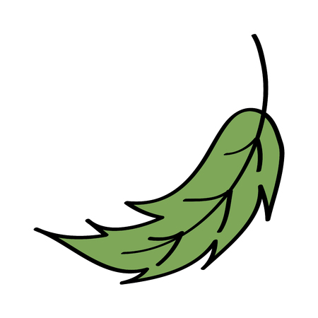 leaf foliage botany frond natural icon vector illustration