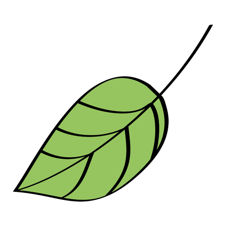 葉の葉植物学フロンド自然なアイコンベクトル図  イラスト・ベクター素材