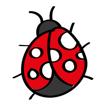 cute insect ladybug animal wildlife icon vector illustration Illusztráció